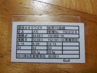 ♂820 Gull様 管理表