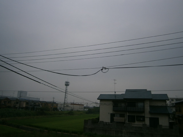 P8010001.jpg