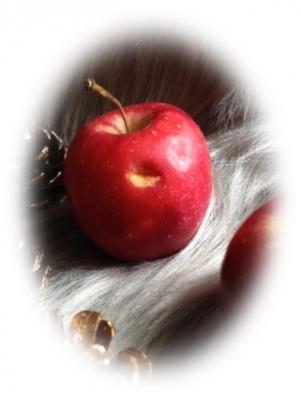 リンゴ002