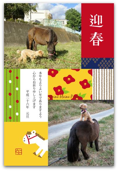nenga blog 2014