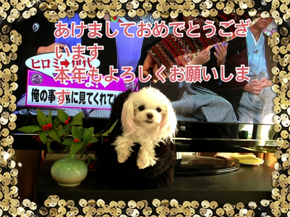 fc2blog_20140101104759f71.jpg