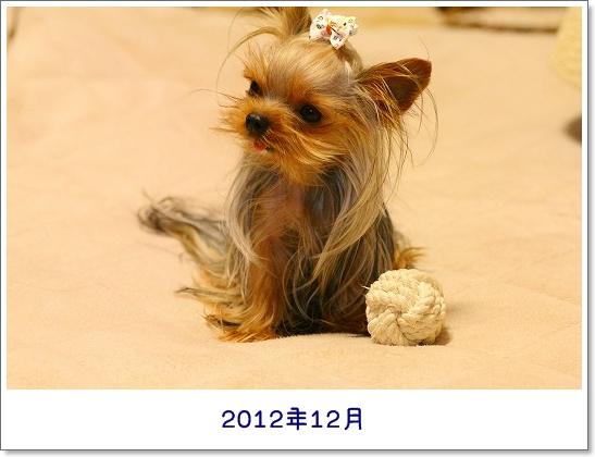 IMG_0112LL.jpg