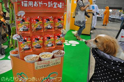 interpets201309.jpg