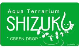 sizuku02.jpg