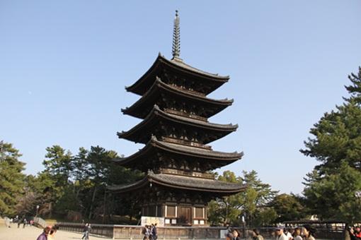 奈良公園3032511
