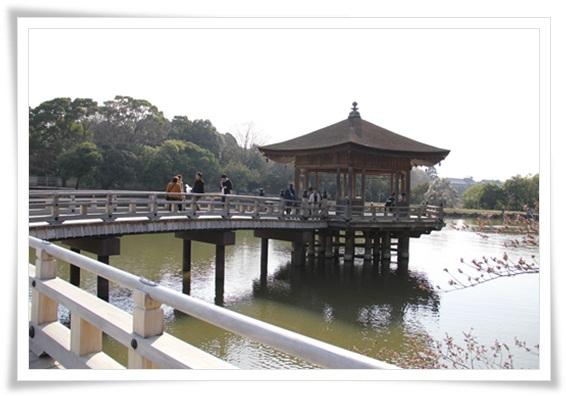 奈良公園303256