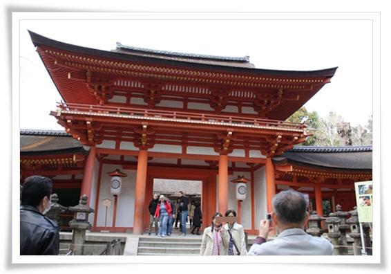 奈良公園303253