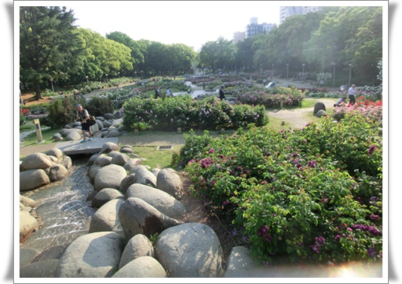 ウツボ公園305211