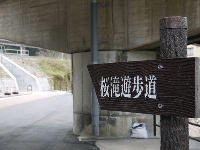 桜滝&遊歩道NO3