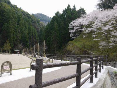 桜滝&遊歩道NO4