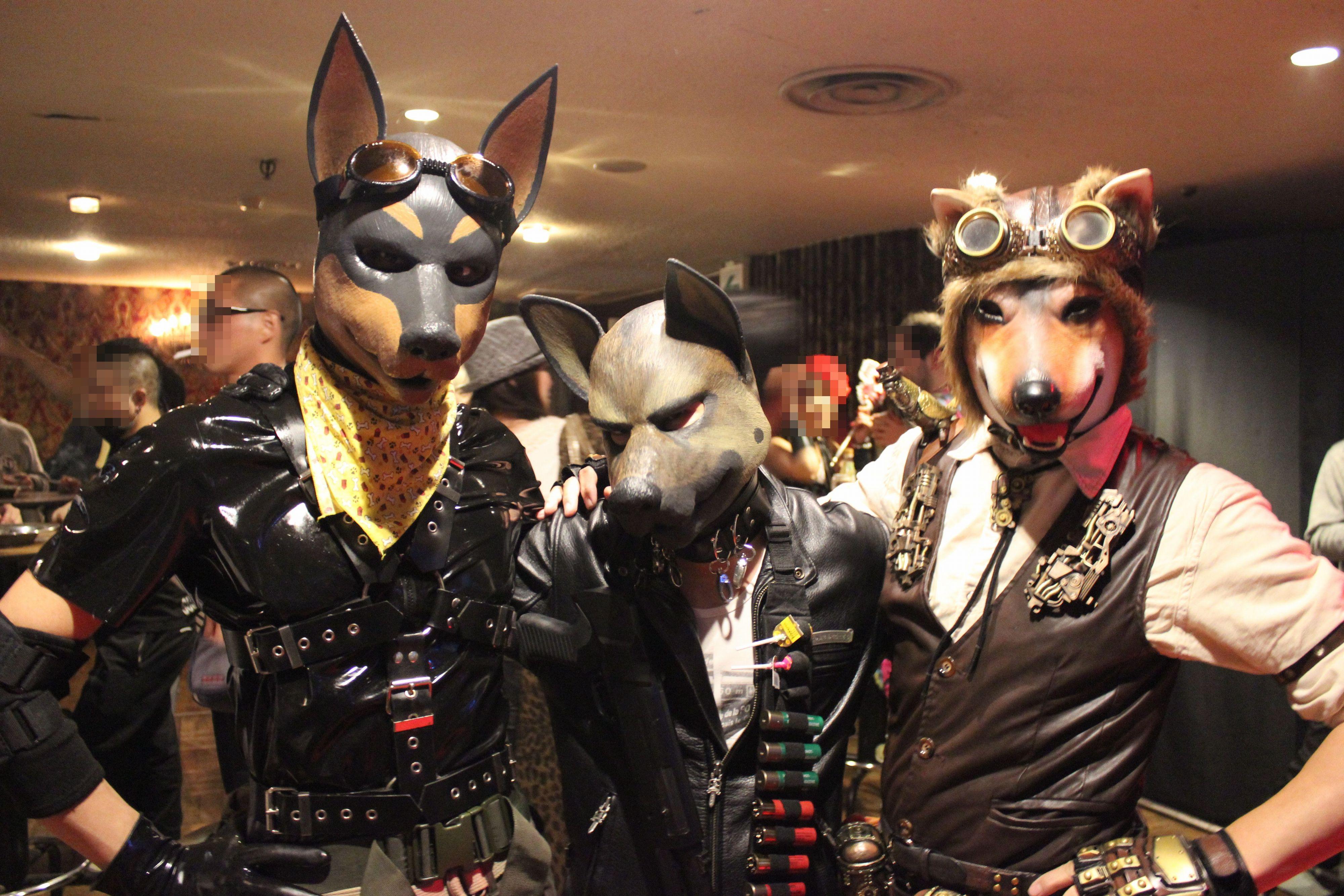 デパートメントH 2099@鶯谷東京キネマ倶楽部 2014年11月~わんわんわんの日(11月1日)に犬装家が集う!