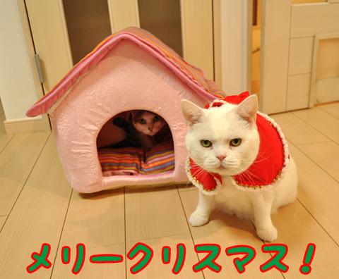 131224_クリスマス02