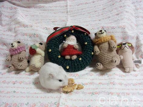 クリスマス2013_5