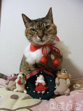 クリスマス2013_3