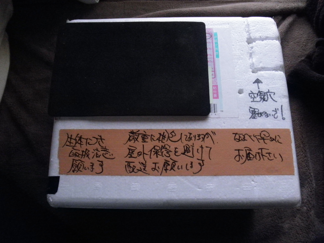 PC290643.jpg