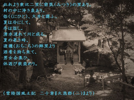 IMG_0917a.jpg