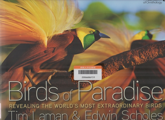 Birds of Paradise, Revealing the worlds most extraordinaray birds, National Geographic, 2012