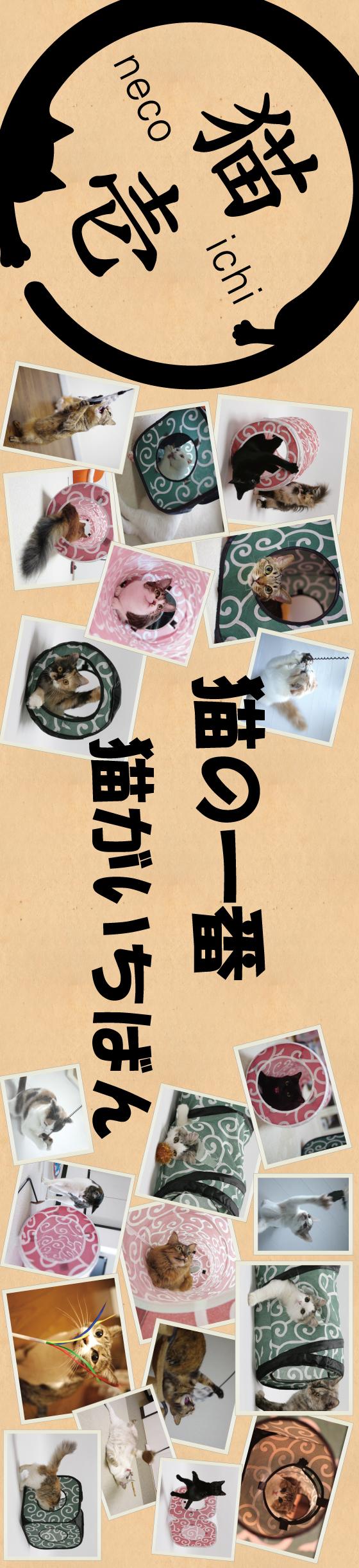10猫壱ボード
