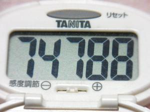 131213-231歩数計(S)