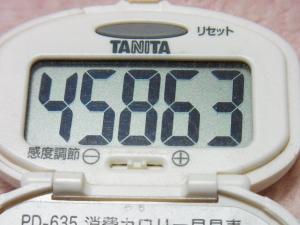131215-251歩数計(S)