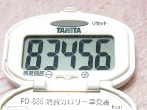 131216-231歩数計(S)