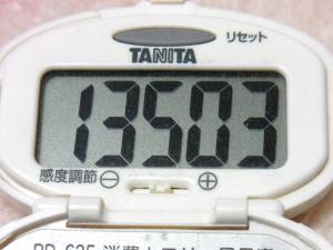 131217-241歩数計(S)