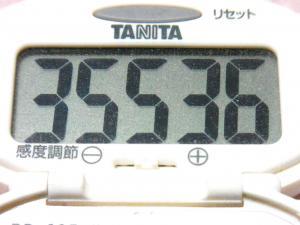 131221-261歩数計(S)
