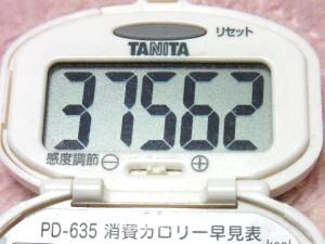 131228-217歩数計(S)