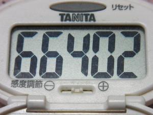 131229-251歩数計(S)