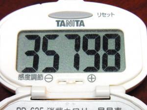 131231-291歩数計(S)