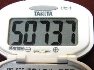 140101-208歩数計(S)