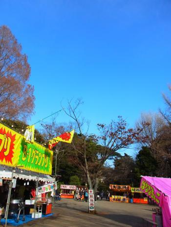 140103-201大宮公園(S)