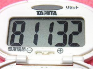 140105-231歩数計(S)