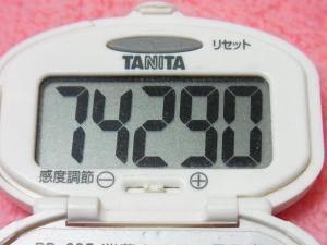 140112-231歩数計(S)