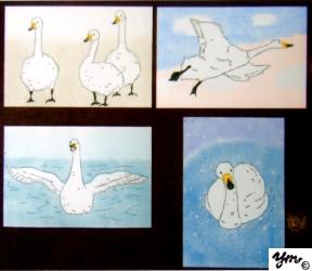 swan サイン