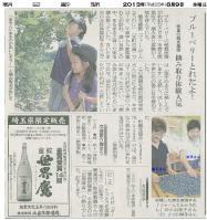 てんとうむし_朝日新聞