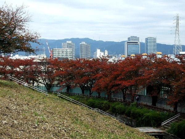 ②新川0061