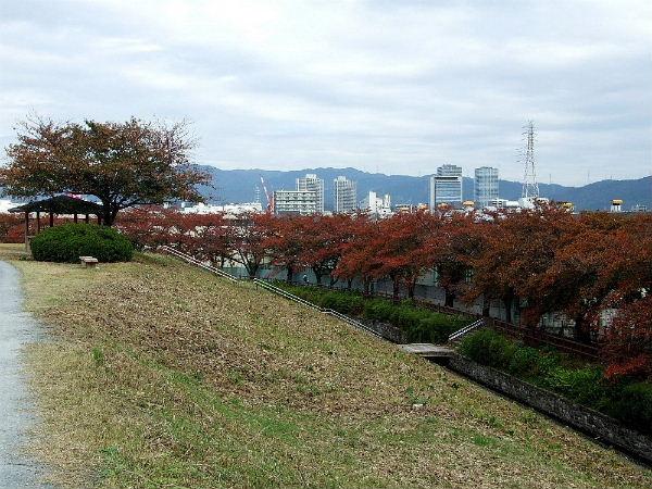 ⑩新川0062