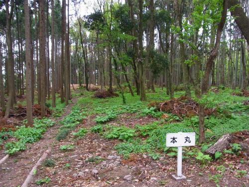 額田城 (4)