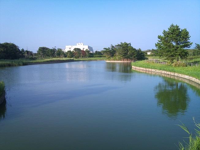 蓮沼海浜公園3