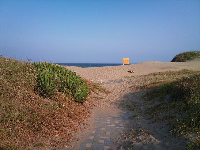 蓮沼海浜公園4