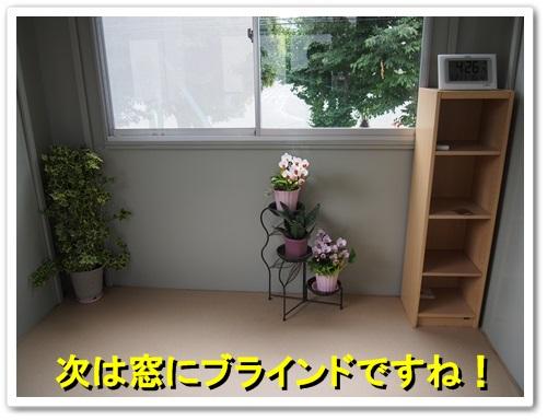 20130521_038.jpg