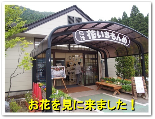 20130525_337.jpg