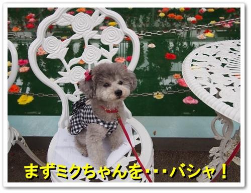 20130525_387.jpg
