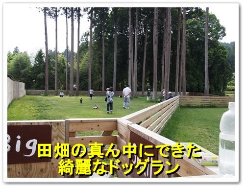 20130525_453.jpg