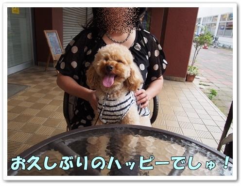 20130528_011.jpg