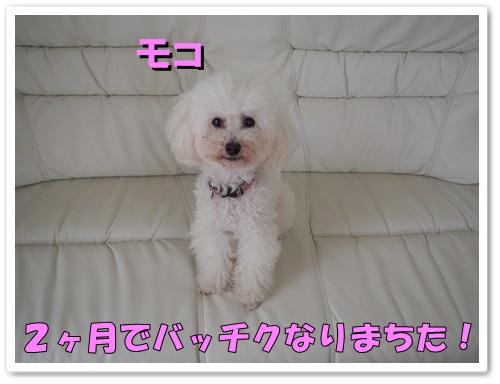 20130530_059.jpg