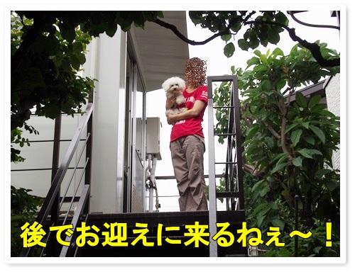20130530_077.jpg