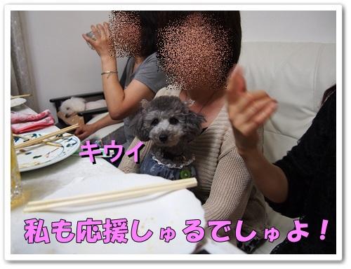 20130530_197.jpg