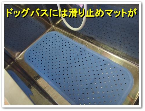 20130605_091.jpg